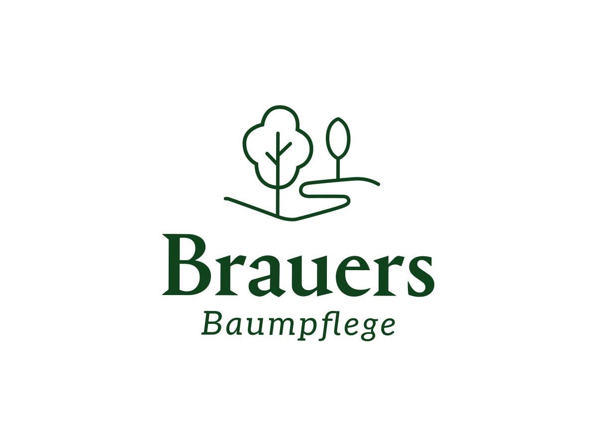 brauers baumpflege branding markenentwicklung  logodesign