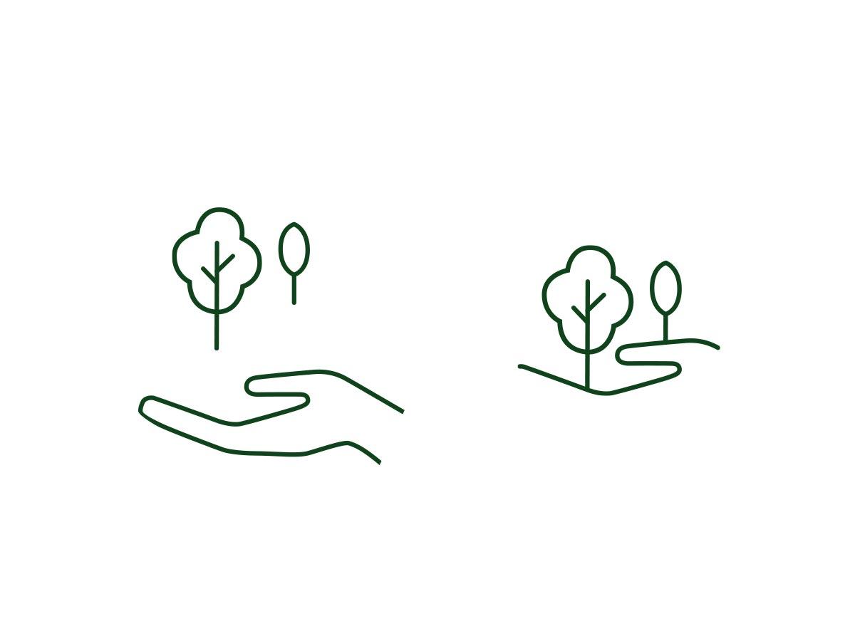 brauers baumpflege branding markenentwicklung  logoentwicklung