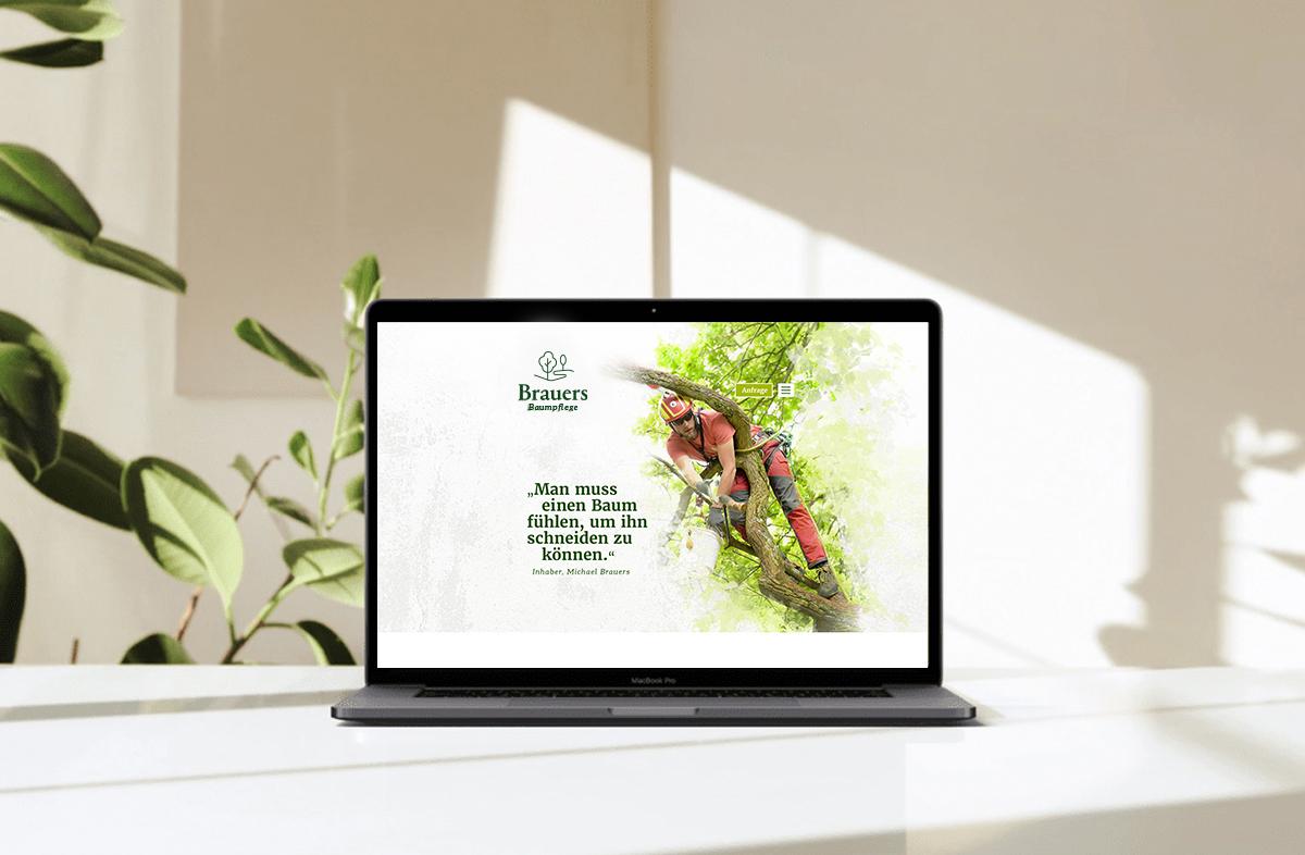 brauers baumpflege branding markenentwicklung webdesign
